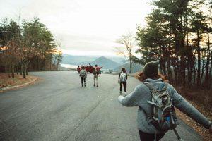 rucksack-daypack