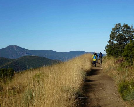 Den Jakobsweg in Spanien gehen