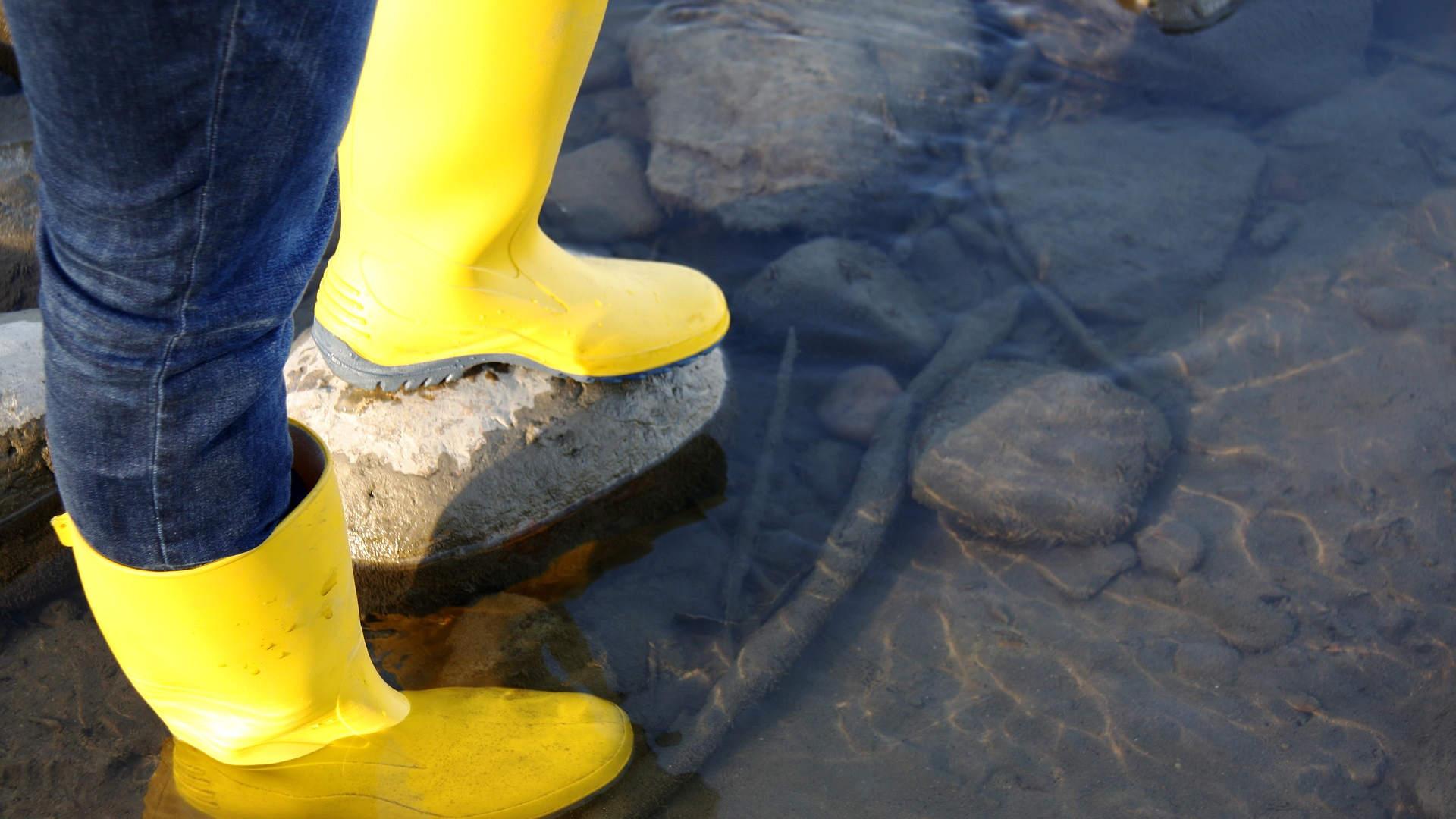 5 Tipps zum Überqueren von Gewässern