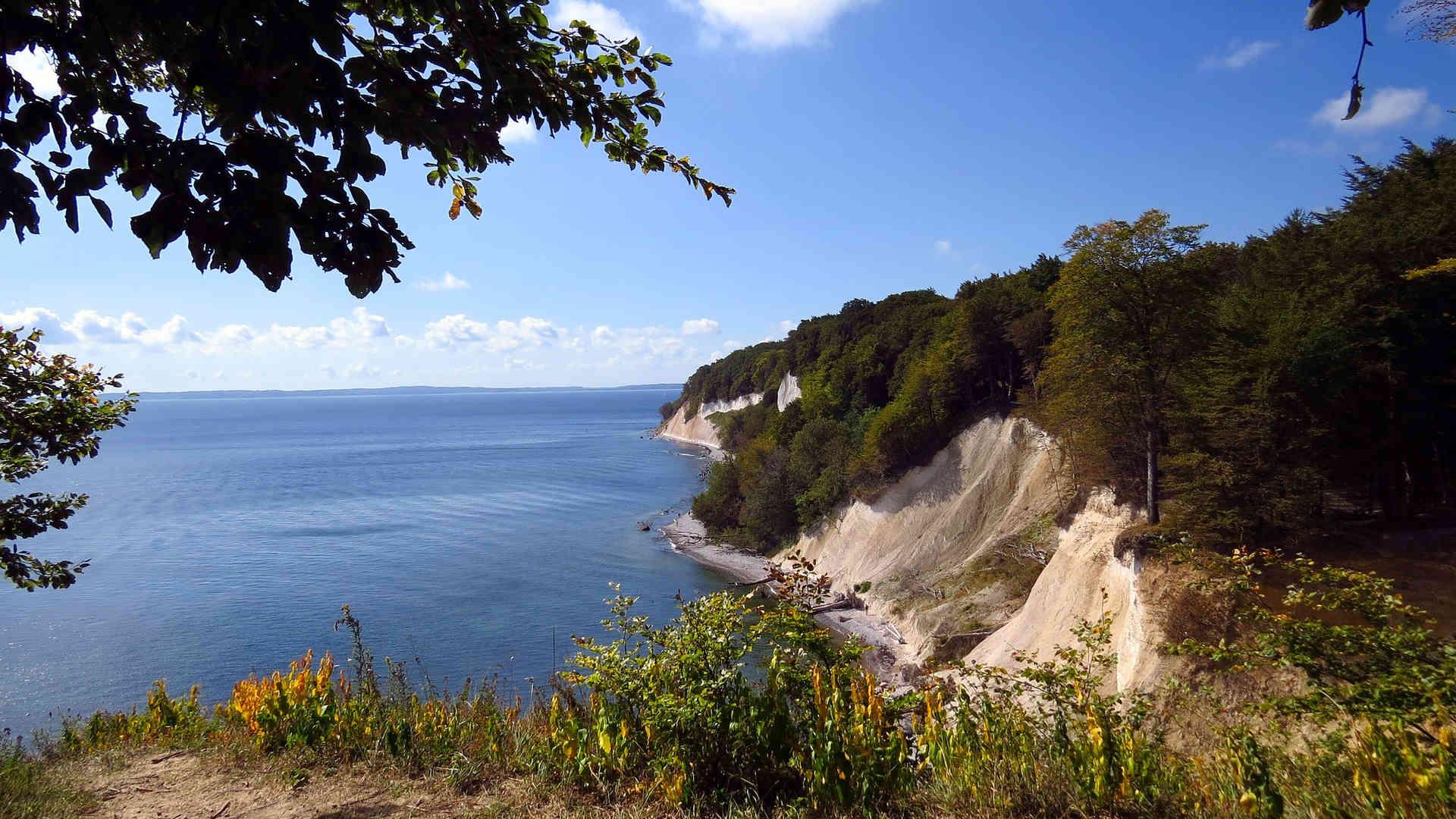 Der Nationalpark Jasmund: Urlaub auf Rügen