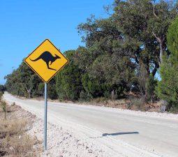 So schützt du dich vor wilden Tieren in Australien