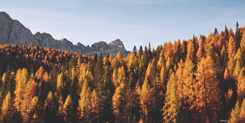 Zelten im Herbst: Tipps zum Herbst-Camping