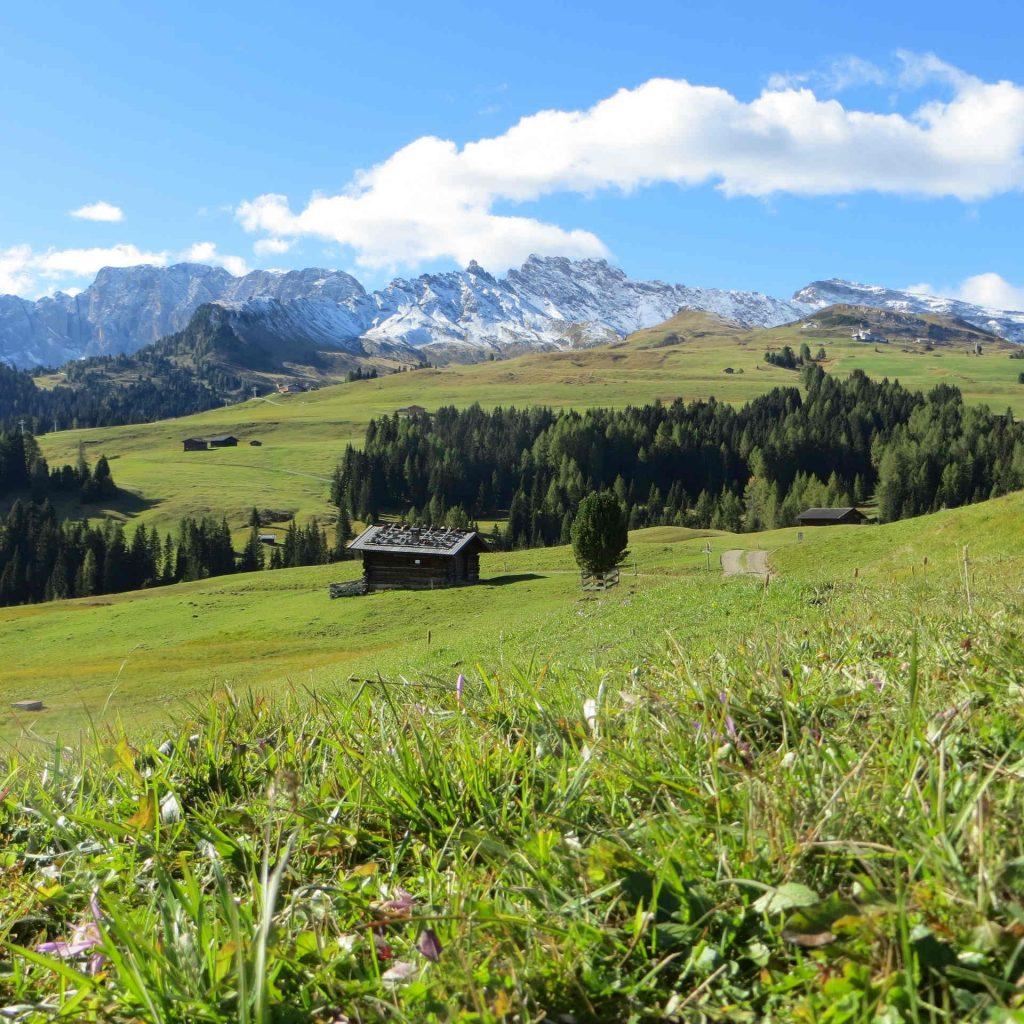 seiser-alm-wanderregion-alpen