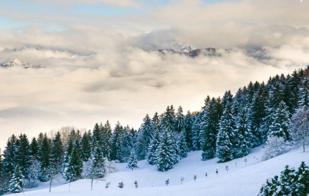 was-braucht-man-zum-ski-fahren